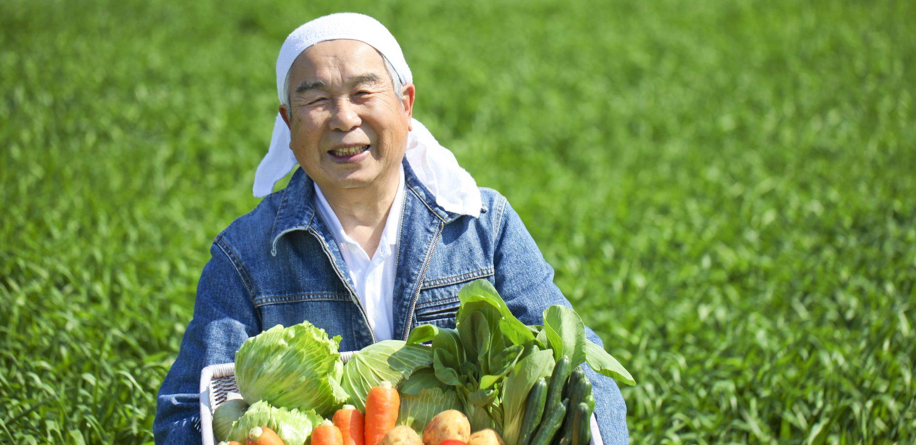 高齢者住宅の運営のイメージ